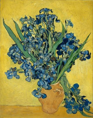Reprodukcja Irises May 1890, Vincent van Gogh