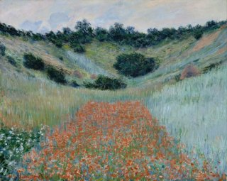 Reprodukcja Poppy Field in a Hollow near Giverny, Claude Monet